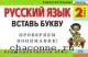 Русский язык 2 кл. Вставь букву. Грамматические игры